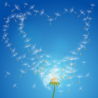 Vector flower dandelion on a wind loses the integrity forming love