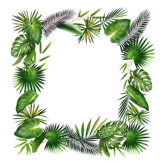 緑、紫の熱帯植物のヤシ、シダ、竹、モンステラの葉からのベクトルフレームは白い背景で隔離