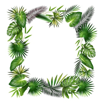 Vector frame from green, violet tropical plants palm, fern, bamboo and monstera leaves isolated on white background