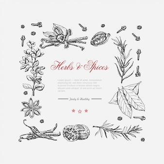 Vector frame of spices and herbs