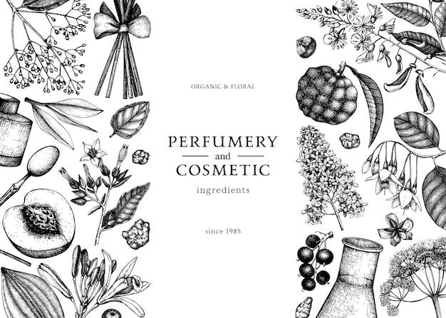 香りのよい果物や花のベクトルフレーム香水や化粧品の成分の図芳香族および薬用植物のデザイン招待状またはグリーティングカードの植物テンプレート