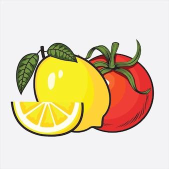 Vector fresh fruits on white background