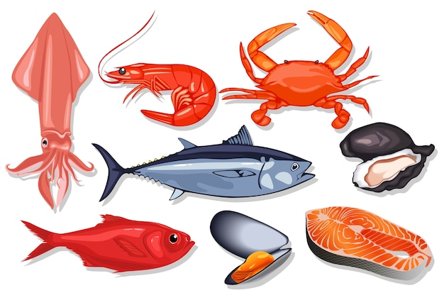 Векторная свежая рыба-морепродукты