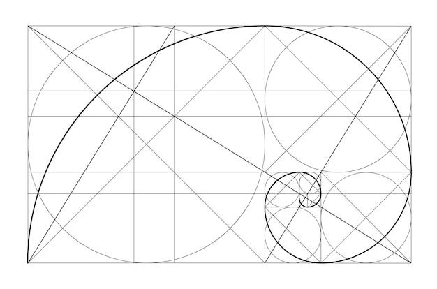 Вектор золотые отношения шаблон золотая спираль золотое сечение массив фибоначчи число фибоначчи деление ...