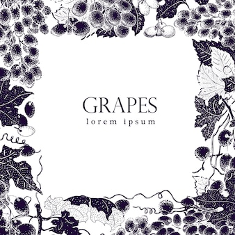 Vector grape frame. vintage hand drawn illustration