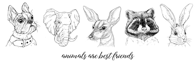 Vector graphic images of animals