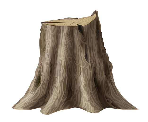 Vector graphics. large old tree stump oak broken trunk.
