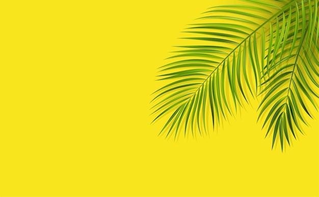 最小限の黄色の背景にオーバーレイシャドウとヤシの木のベクトル緑の葉