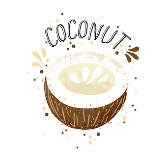 Vector hand draw coconut illustration. brown coconuts with juice splash isolated on white background.