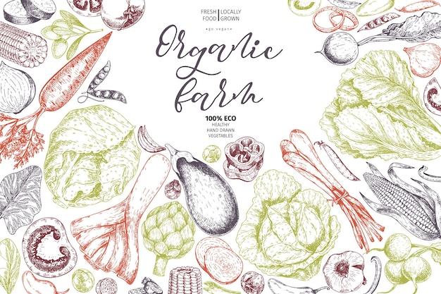 Vector hand drawn farm vegetables