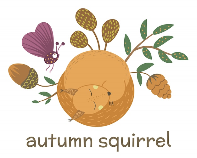 Vector hand drawn flat sleeping squirrel with acorn, cone, insect, leaves. funny autumn scene with woodland animal. cute forest illustration