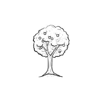 Вектор рисованной фруктовое дерево наброски каракули значок. иллюстрация эскиза фруктового дерева для печати, интернета, мобильных устройств и инфографики, изолированные на белом фоне.