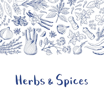 Vector hand drawn herbs and spices background with title