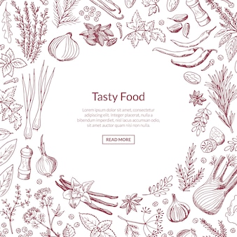 Vector hand drawn herbs and spices frame background with text template