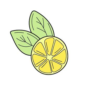 벡터 손으로 그린 레몬. 열대 과일. 스케치. 낙서. 여름 디자인