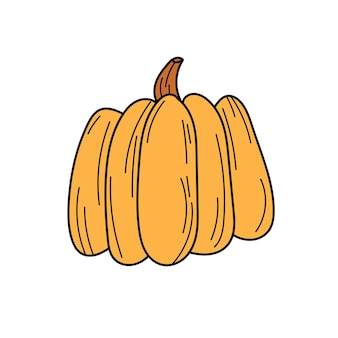 Vector hand drawn pumpkin doodle icon. food sketch illustration for print, web, mobile and infographics isolated on white background.