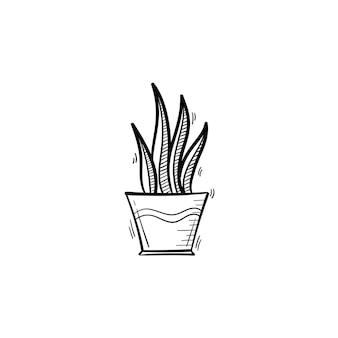 벡터 손으로 그린 sansevieria trifasciata 개요 낙서 아이콘. 흰색 배경에 고립 된 인쇄, 웹, 모바일 및 infographics에 대 한 장식 화분에 심은 집 식물 스케치 그림.