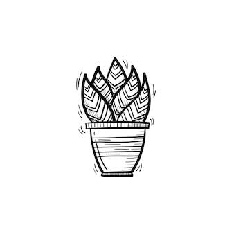 ベクトル手描きのサンセベリアtrifasciataアウトライン落書きアイコン。白い背景で隔離の印刷、ウェブ、モバイル、インフォグラフィックの装飾的な鉢植えの観葉植物のスケッチイラスト。