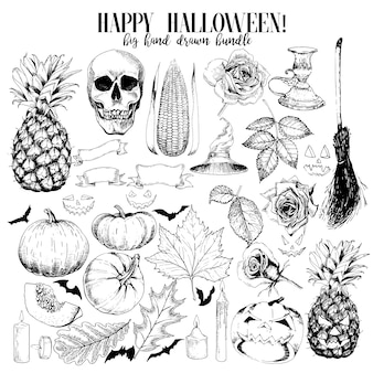 Vector hand drawn set of halloween decoration elements.