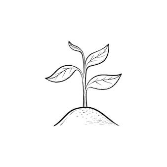벡터 손으로 그린 새싹 개요 낙서 아이콘입니다. 인쇄, 웹, 모바일 및 흰색 배경에 고립 된 인포 그래픽에 대 한 새싹 스케치 그림.