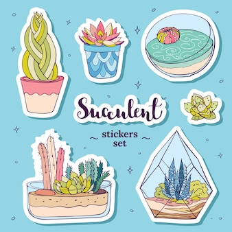 Vector hand drawn succulents stickers set