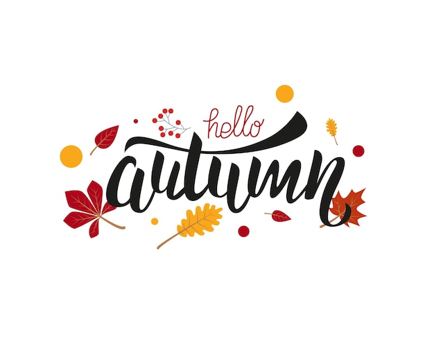 Vector hand written lettering quote hello autumn modern calligraphy phrase design for decor cards