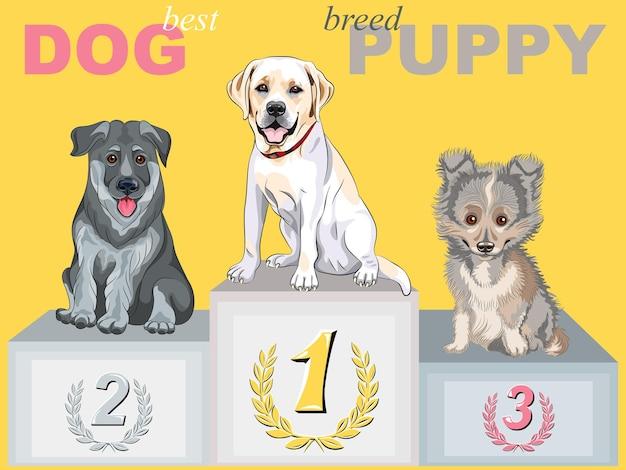 Вектор счастливый щенок чемпион на подиуме