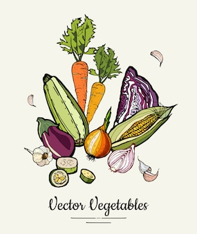 Vector hipster hand drawn colored vegetables