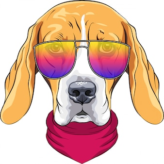 Vector hipster serious dog beagle breed in red cravat and trendy two-color glasses