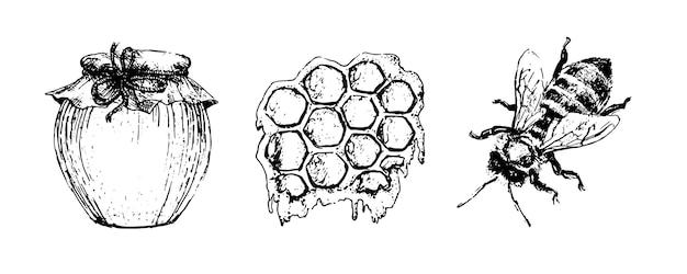 Векторный набор меда. урожай рисованной иллюстрации. гравированные натуральные продукты