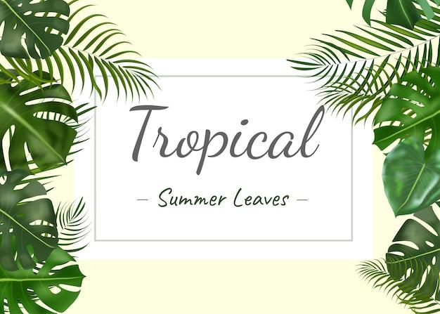 Вектор горизонтальные тропические летние листья баннеры на белом фоне экзотический ботанический дизайн