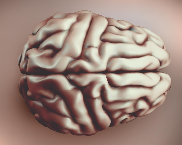 Vector human brain in retro style, top view