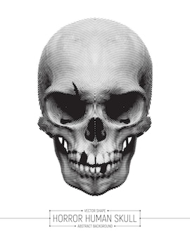 Vector human horror skull art illustration