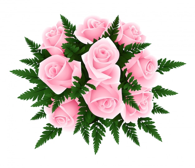 Vector illustration of bouquet of pink roses with fern leaves isolated on a white.