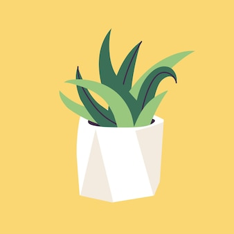 Vector illustration concrete pot with succulent plants. stylish home decor in trendy scandinavian style.