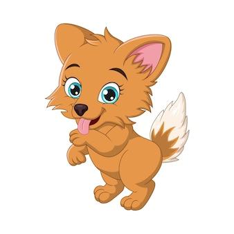 Vector illustration of cute corgi dog cartoon on white background