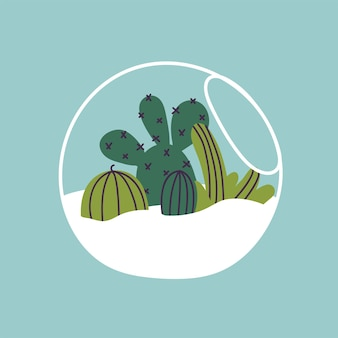Vector illustration of florarium. various of succulents, cactuses and tropical leaves. stylish home decor in trendy scandinavian style.