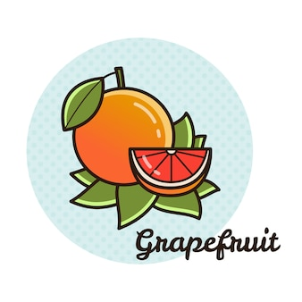 Vector illustration of a grapefruit.
