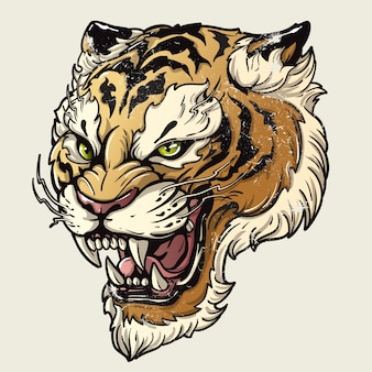 Vector illustration head ferocious tiger on a white background