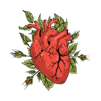 Vector illustration heart and rose
