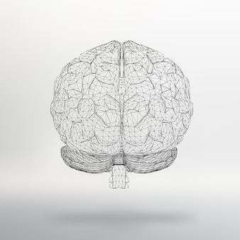 Векторная иллюстрация человеческого мозга абстрактный фон молекулярная решетка многоугольный стиль дизайна