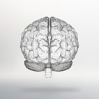 Vector illustration human brain. the structural grid of polygons.