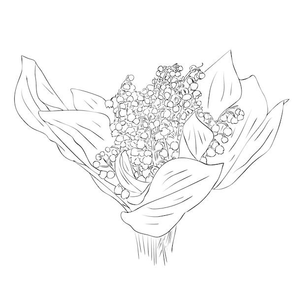 ベクトルイラスト、黒と白の色でスズランの花の孤立した花束、アウトライン手描きの描画