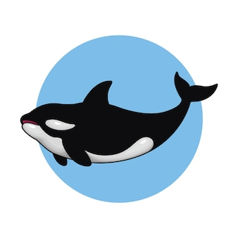 Vector illustration of killer whale