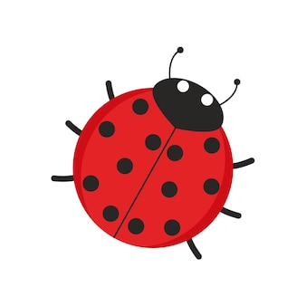 Vector illustration of a ladybug red to black dot with head and antennae