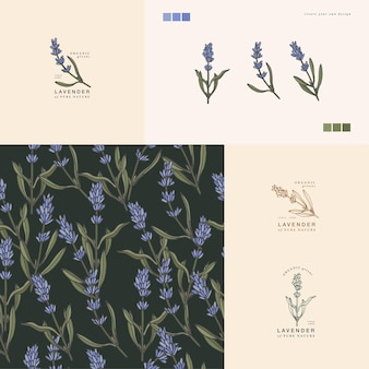 Векторная иллюстрация ветка лаванды винтажная выгравированная композиция логотипа в ботаническом стиле ретро ...