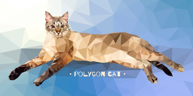 Vector illustration in low polygon style. cat on a colored background.