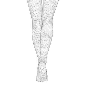 인체의 벡터 일러스트 레이 션. 3차원 삼각형 메쉬 형태의 여성 다리