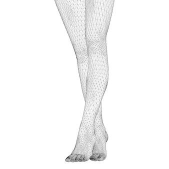 인체의 벡터 일러스트 레이 션. 3차원 삼각형 메쉬 형태의 여성 다리.