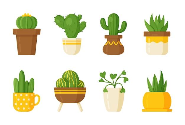 선인장과 실내 식물 세트의 벡터 그림. 플랫, 만화 스타일. 가시 선인장과 다육 식물 배경, 예술.